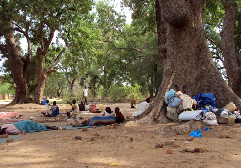 Families from Abyei and Agok sleeping under trees, out in the open without shelter.